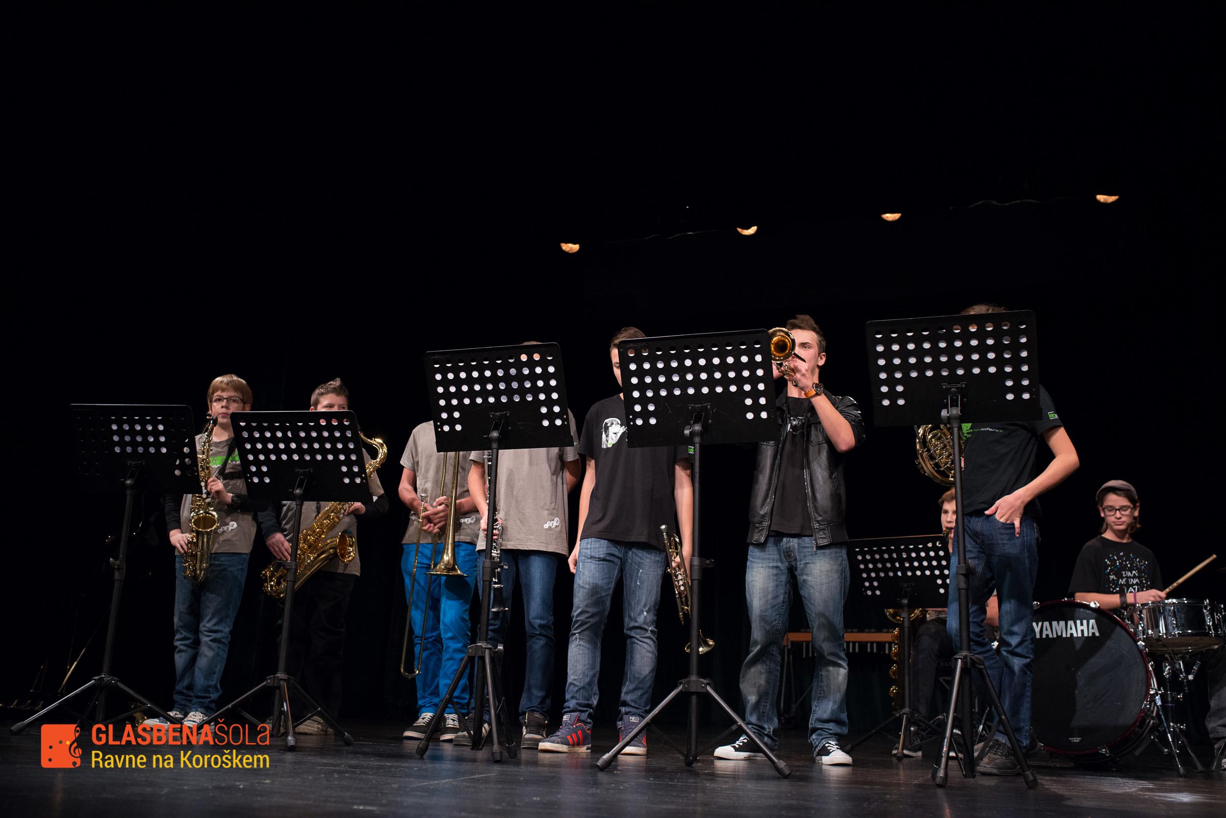 koncert-08-11-2014-39