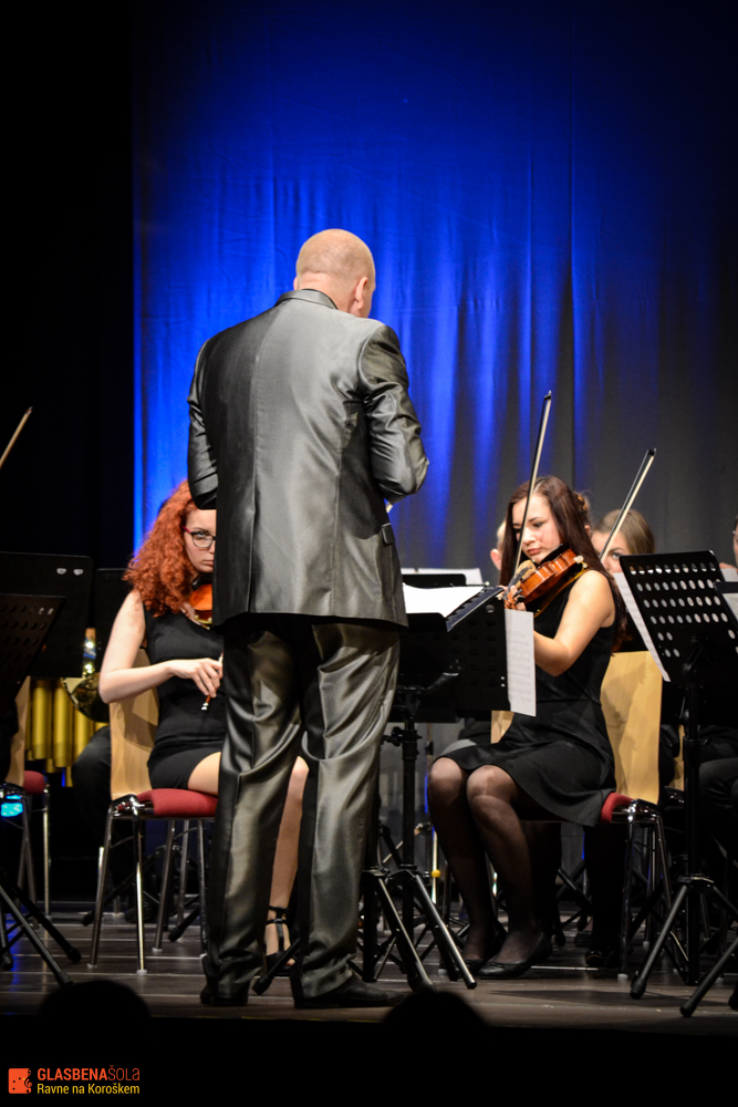 gs_koncert_godalni_simfon_2015-30